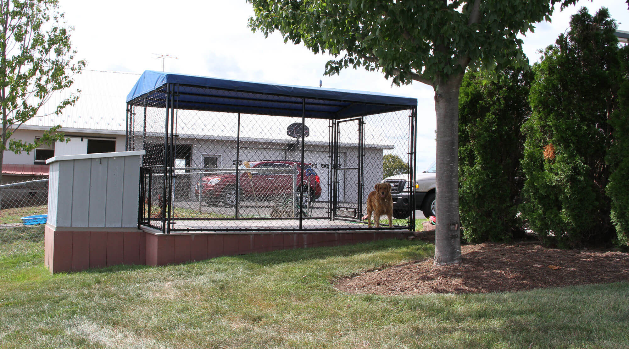 dog kennel with chain link fencing master link supply